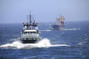 ALP Ippon_towing MV Anna Chris (7).jpeg
